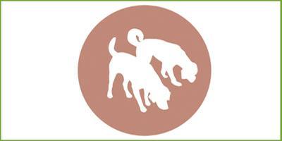 partner-logo-schnueffelnase